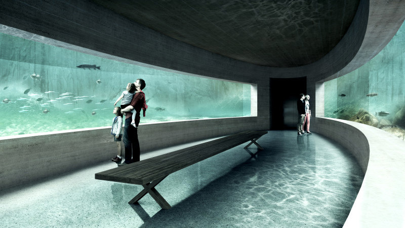 043_ML_Image_aquarium-800x533